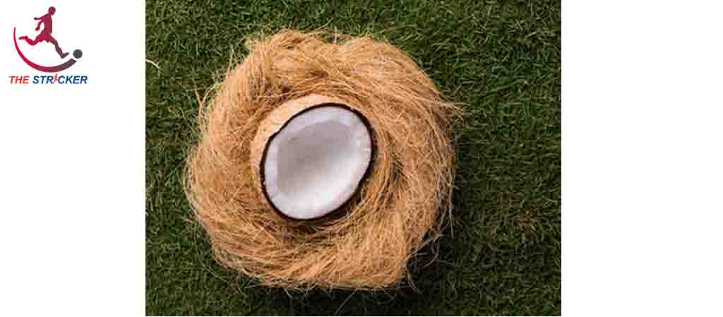 Properties & Uses of Coir Fiber With Types & Manufacturing Process