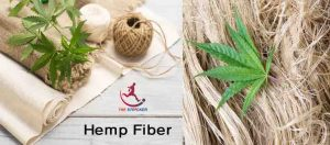 Hemp Fiber Properties and Uses | Extraction Process | The Stricker |