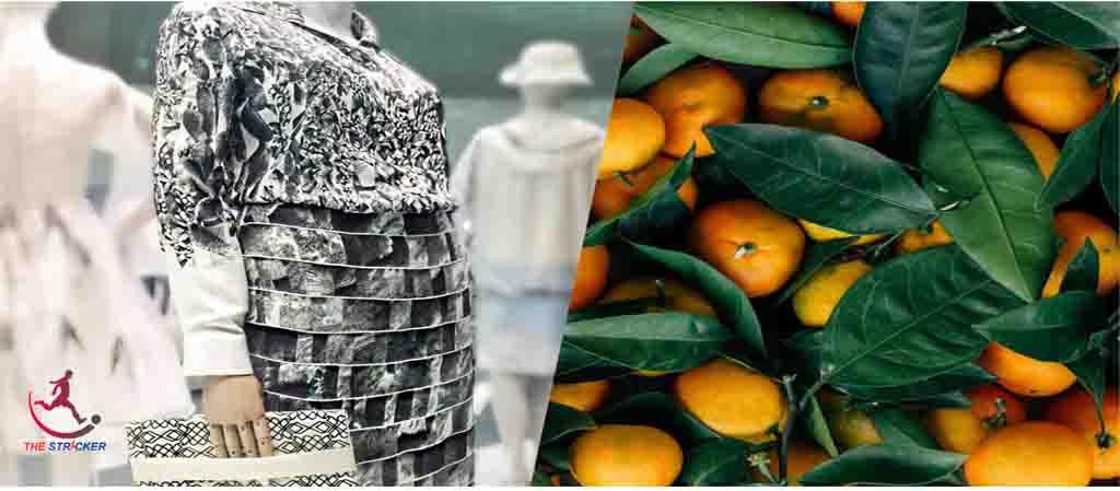 Orange Fiber Fabric-Innovation of Textile Fiber   The Stricker
